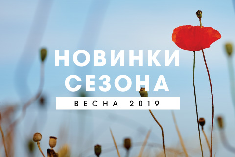 6ba86a8a Обувь и аксессуары ECCO в Беларуси